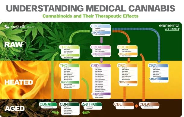 Understanding-Medical-Cannabis-2